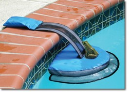 Speaking Of Wild Animals, You Can Promote Safety For More Than Just The  People Who Enjoy Your Pools. This Nifty Critter Escape Ramp Allows Any  Little ...